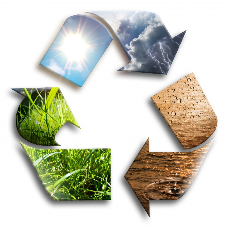 C2C, sostenibilidad rentable, sostenibilidad a medida