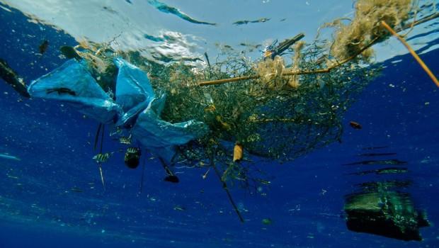 SeaBin: papelera para basura marina